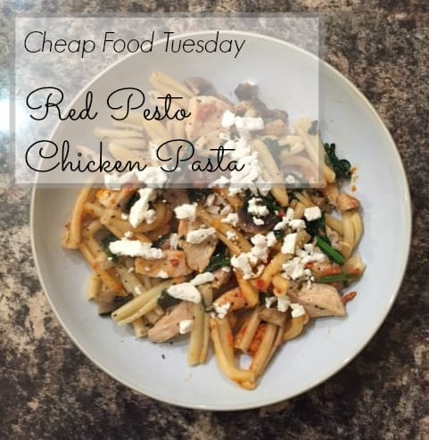 Cheap Food Tuesday: Red Pesto Chicken Pasta - The Wallet Moth