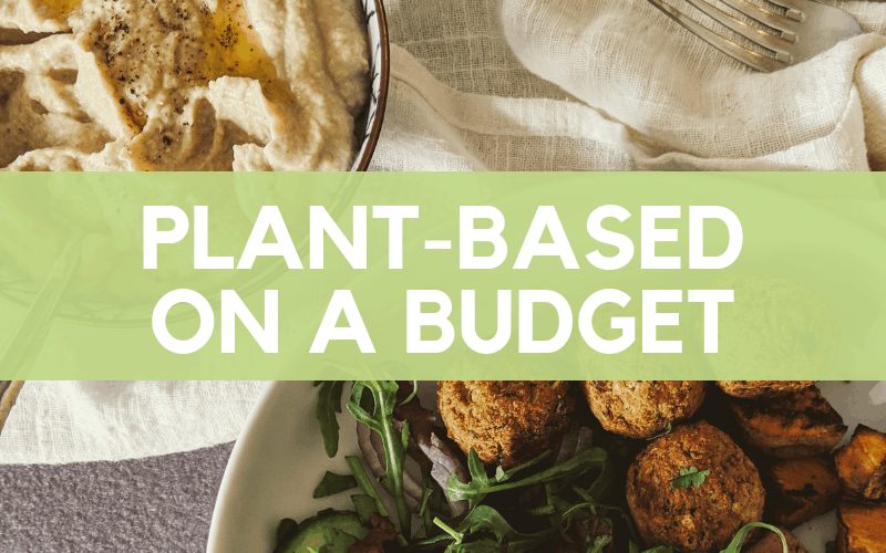 Plant-Based On A Budget: Vegan Meal Plan, Grocery List & Cheap Recipes