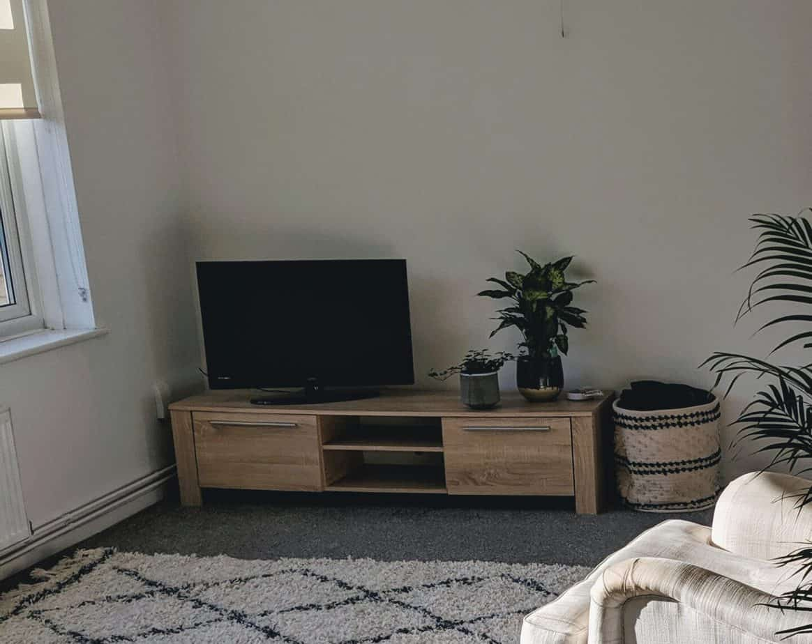 TV unit with TV, house plants, and rug on display.
