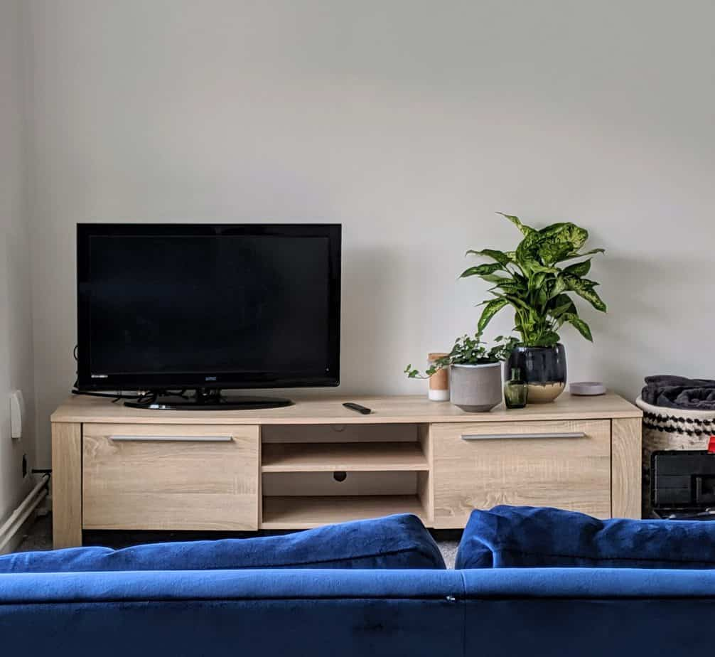 TV Unit with a TV and houseplants, plus the top of a blue velvet sofa in the foreground for living room ideas on a budget.