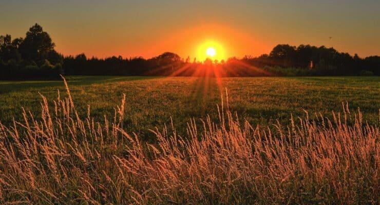 sunrise | early morning jobs