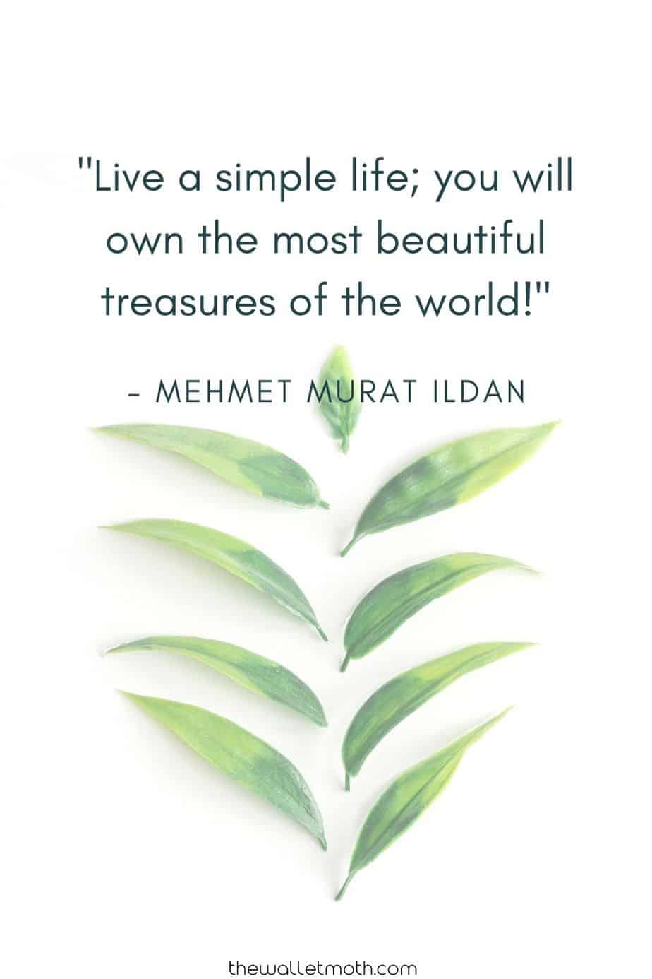 """Live a simple life; you will own the most beautiful treasures of the world!"" - Mehmet Murat Ildan"