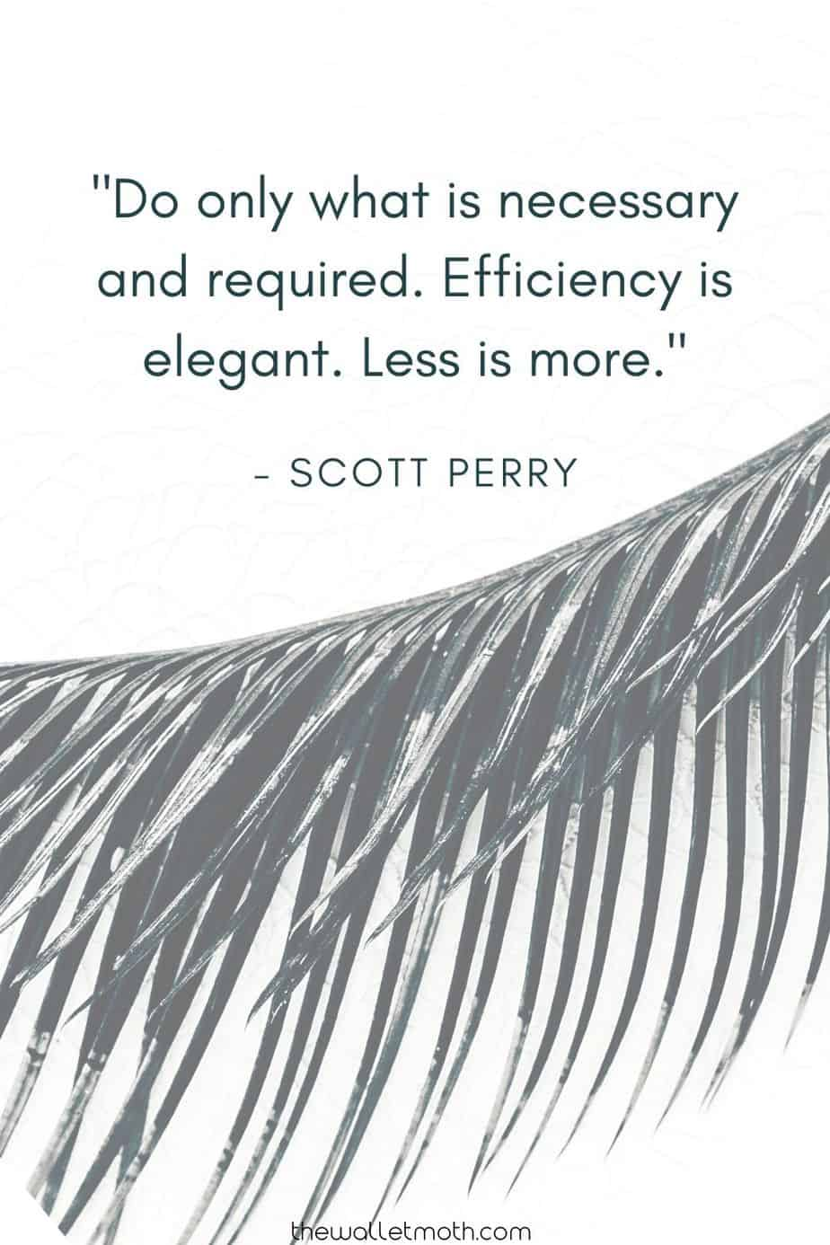 """DO ONLY WHAT IS NECESSARY AND REQUIRED. EFFICIENCY IS ELEGANT. LESS IS MORE."" - SCOTT PERRY. Simple Living Quote"