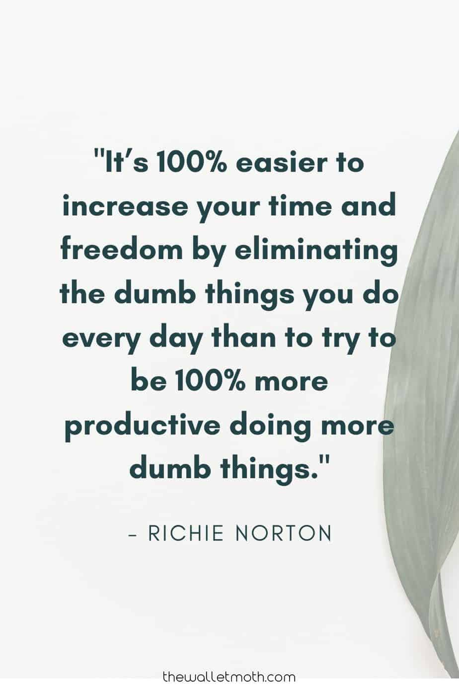 """It's 100% easier to increase your time and freedom by eliminating the dumb things you do every day than to try to be 100% more productive doing more dumb things."" - Richie Norton"